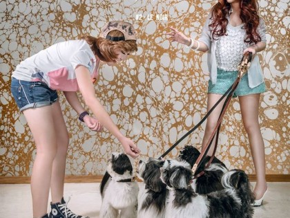 Tips & Tricks: Courtesy to say hello to dogs we firstly met